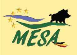 MESA – 2019