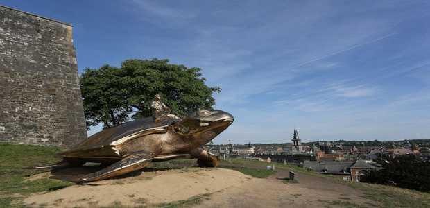 Tortue Citadelle Namur